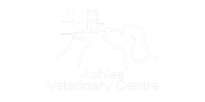 Ashlea-Vets-300 Team and Quality Management
