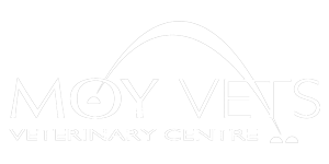 Moy-Vets-300px Team and Quality Management